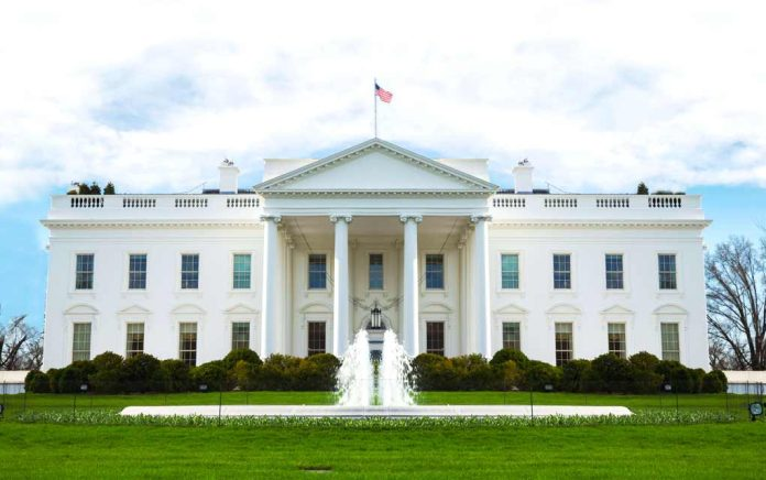 Who's Likely to Take the White House in 2024?